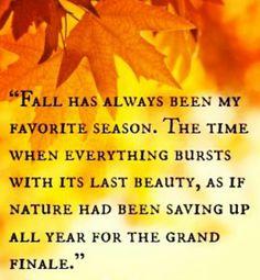 fall has always been my favorite season
