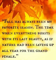 fall has always been my favorite season