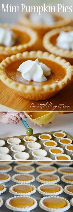 These mini pumpkin pies are so EASY and they taste amazing! So awesome for when you've eaten a huge dinner and can't eat a full plate of dessert! desserts desserts for baby shower desserts for weddings Desserts Keto, Mini Desserts, Holiday Desserts, Holiday Baking, Delicious Desserts, Mini Dessert Tarts, Marshmallow Desserts, Flourless Desserts, Spanish Desserts
