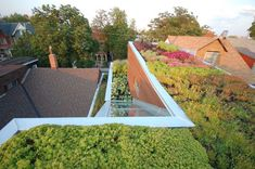 Roof top garden and 2nd floor garden with skylight above stairs