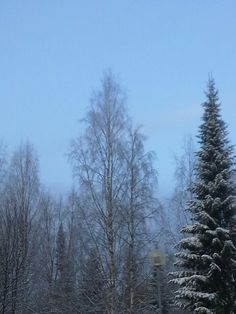 Talven kylmä kuvina