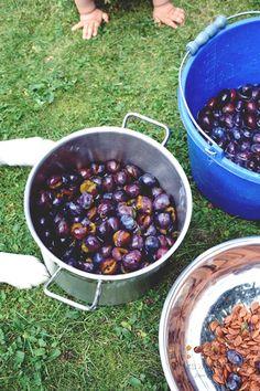 Jak zrobić powidła ze śliwek Blueberry, Fruit, Food, Berry, Blueberries, Meals