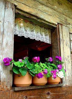 Linda e rústica janela com renda e vasos de barro.