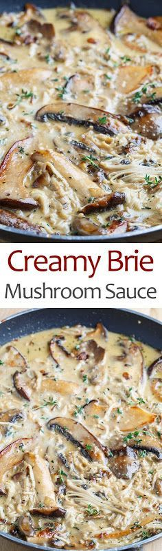 Creamy Brie Mushroom Sauce - who needs a restaurant when you can create rich, creamy mushroom sauce for your meats and veggies at home? A creamy mushroom sauce made even creamier with brie that is perfect on everything from pasta to steaks to veggies! Vegetarian Recipes, Cooking Recipes, Healthy Recipes, Cooking Sauces, Creamy Mushroom Sauce, Mushroom Sauce For Chicken, Creamy Mushrooms, Creamy Sauce, Mushroom Soup