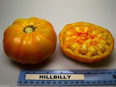 Beefsteak Heirloom Tomato,Hillbilly,-50 Seeds-Great for Sandwiches&salads