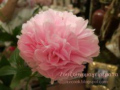Ζουζουνομαγειρέματα: Αρωματική μαρμελάδα τριαντάφυλλο!!! Rose, Garden, Flowers, Plants, Pink, Garten, Florals, Gardens, Roses