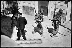 Sicilia, 1943.