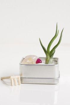 Zen Garden Favor Kits...cute idea!