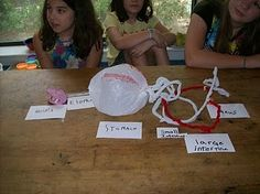 the kids at the Living School made a model of the digestive system