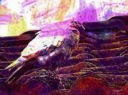 """New artwork for sale! - """" Dove Roof White Dove Bird Birdie  by PixBreak Art """" - http://ift.tt/2tSgLQJ"""
