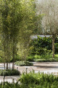 Image 22 of 36 from gallery of DECA Urban Garden in Sao Paulo / Hanazaki Paisagismo. Photograph by Yuri Seródio Backyard Walkway, Backyard Landscaping, Landscaping Ideas, Plant Design, Garden Design, Landscape Architecture, Landscape Design, Planting Shrubs, Tropical Landscaping