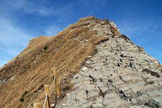 #Wanderung – Damülser Mittagsspitze: http://www.downhillhoppers.com/?p=7005