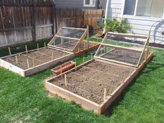raised garden beds that a friend in Fort Collins constructed