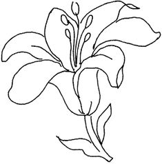 Kids Like to Coloring Page of Lily Flower : New Coloring Pages Colorful Drawings, Easy Drawings, Flower Wall Design, Printable Flower Coloring Pages, Mosaic Flowers, Flower Embroidery Designs, Wood Burning Patterns, Stencil Designs, Fabric Painting