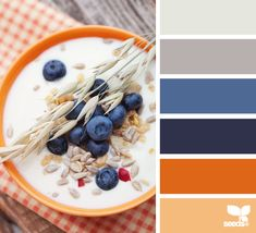 New kitchen grey orange design seeds Ideas Colour Pallette, Color Palate, Colour Schemes, Color Patterns, Color Combos, Design Seeds, Paleta Pantone, Orange Design, Blue Design