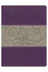 Purple Floral Full-Color Study Bible,KJV $69.99 http://www.celebrateyourfaith.com/Purple-Floral-Full-Color-Study-P15331C157.cfm