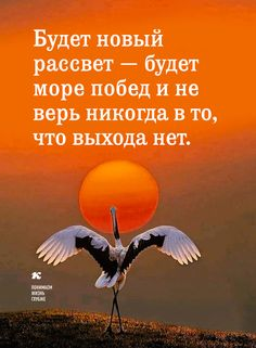 Понимаем жизнь глубже. Wise Quotes, Motivational Quotes, Inspirational Quotes, Positive Thoughts, Positive Quotes, Cool Words, Wise Words, Russian Quotes, Different Quotes