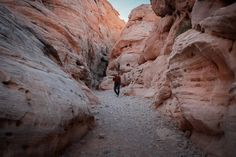 Valley of Fire Nevada is the best Las Vegas day trip. Here is the one day Valley of Fire itinerary plus the best photo spots. Valley of Fire State Park | Las Vegas Day Trip | Nevada State Parks | Valley of Fire Photo Spots | Instagrammable Places Valley of Fire Travel Ideas, Travel Inspiration, Las Vegas Valley, Valley Of Fire State Park, Visit Las Vegas, Nevada State, Us Travel Destinations, Camping Spots, Cool Places To Visit