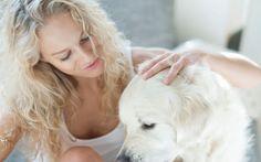 Les pitbulls sont réputés pour être des chiens méchants et de mauvaise humeur. La vérité est que les pitbulls sont comme toutes les autres races de chiens : ils sont loyaux, affectueux et très protecteurs envers leurs maîtres et leur territoire. Les pitbulls sont des...