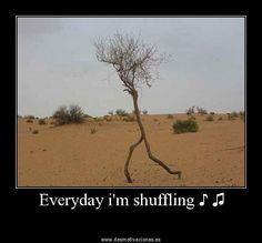 Everyday I'm shuffling <3