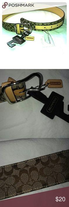 "New coach belt Nwt coach belt size small; 32"" long 1 1/2"" wide; Coach Accessories Belts"