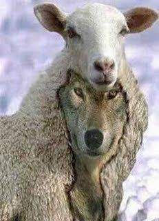 Be careful of the wolf in sheeps clothing!
