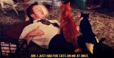 Happy World Cat Day! Here Are 22 Perfect GIFs to Honor Our Feline Overlords | E! Online Mobile