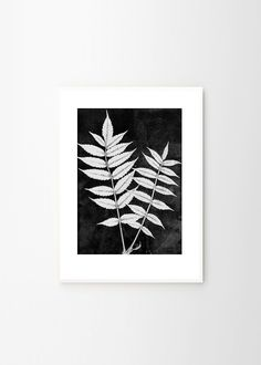 Sumac white by Pernille Folcarelli   Poster from theposterclub.com