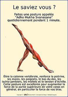 Amano'Hilot – Thérapeute énergétique – Magnétiseur – My Favorite Ashtanga Vinyasa Yoga, Bikram Yoga, Iyengar Yoga, Yoga Gym, Namaste Yoga, Yoga Meditation, Fitness Del Yoga, Yoga Muscles, Yoga Positions
