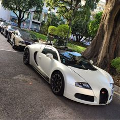 "Bugatti Veyron Grand Sport ""Sang Blanc"" painted in White & a Bugatti Veyron Grand Sport Vitesse painted in Gold w/ Burgundy Carbon Fiber  Photo taken by: @paul1lacour on Instagram"