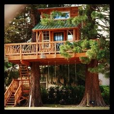 dream house in a tree, Stanwood, WA Haus Am See, Tree House Designs, Tree Tops, In The Tree, Big Tree, Little Houses, Play Houses, Dream Houses, Fairy Houses