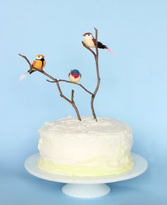 Make this adorable spring layered color cake with DIY bird cake topper for your next spring event, baby shower, bridal shower or birthday party. Bird Birthday Parties, Baby Birthday Cakes, Homemade Birthday Cakes, Bird Theme Parties, Birthday Week, Bird Cake Toppers, Diy Cake Topper, Bird Cage Cake, Cake Pink
