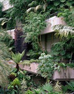 Concrete and greenery.