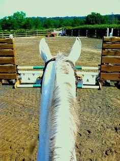#horse #jump Please visit barngirl.com for more