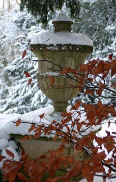 ROUSHAM HALL GARDENS WINTER