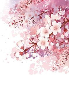 Blossom is very nice🌸 Watercolor Flowers, Watercolor Paintings, Pink Drawing, Drawing Flowers, Art Japonais, Anime Scenery, Flower Wallpaper, Cherry Blossom Wallpaper Iphone, Chinese Art