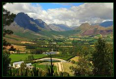 Franschhoek, South Africa home of La Clé des Montagnes- 4 luxurious villas on a working wine farm