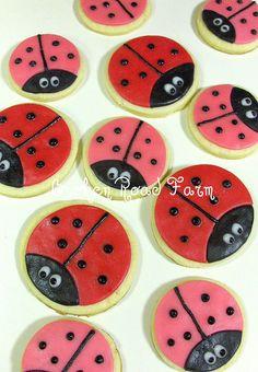 Ladybugs by Broken Road Farm, via Flickr