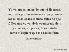 Como si supiera que me hacias falta / Julio Cortazar.