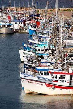 Découvrez les Îles de la Madeleine https://www.hotelscombined.fr/Place/Reunion.htm?a_aid=150886