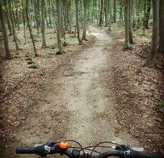 Perfecy way to unwind after a hard day at work.  Cycling baby!!!  #cycling #bike #bicycle #woods #forrest #road #relax #chill #amazing #great #beautiful #nice #magic #stress #stressfree  #hobby #fit #nature #fresh #freshair #health #healthy #offroad #mountainbike #Sibiu #Romania #visit