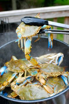 Our How to Guide for Steaming Blue Crabs at home.  Stock the cooler with beer or make some cocktails, invite some friends over and give it a try.