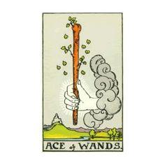 Ace of Wands Meaning - Tarot Card Meanings – Labyrinthos Tarot Cards For Beginners, Tarot Card Spreads, Rider Waite Tarot, Daily Tarot, Oracle Tarot, Tarot Card Meanings, Cartomancy, Card Reading, Book Of Shadows