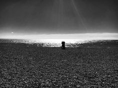 Lonely * ** *** ------------------- +++++++++++++++++++ #instagram #instadaily #instasea #instaday #uk #brighton #brightonandhove #brightonbeach #seaside #phonephoto #phone #phonephotography #black #blacknwhite_perfection #blackart #pebblebeach #babycarrier #lonley #alone #alonetime #montereylocals #pebblebeachlocals - posted by ⚡️ https://www.instagram.com/elvira.zuo - See more of Pebble Beach at http://pebblebeachlocals.com/