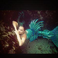 Thanks for the love seafans! So glad you enjoy my work ☺️ ⚓️ #merbella #mermaid #merbellastudios