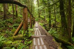100+ Snow-Free Hikes in Vancouver: Trails You Can Hike Year Round | Happiest Outdoors
