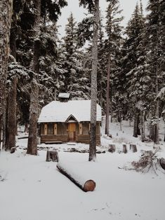 All I Need is a Little Cabin in the Woods Photos) Imagine no more worrying about the commute, early starts or noisy neighbors.These remote cabins would be the perfect hideaway for those who just want to leave everything behind.Secluded in the woods, Winter Cabin, Cozy Cabin, Snow Cabin, Cozy Winter, Cozy Cottage, Forest Cabin, Forest Road, Winter Snow, Snow Forest