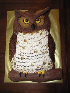 Owl Cake The birthday boy wanted a realistic looking owl cake... so here