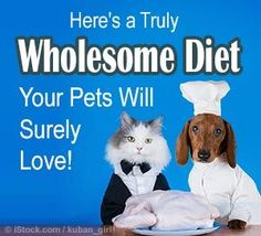 Both cats and dogs are designed to consume raw meat but many vets recommend commercial pet food instead of telling owners to prepare the proper pet diet. Article by Dr. Karen Becker