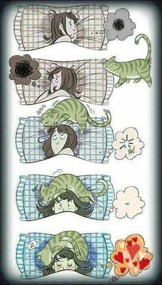 Con gatos se duerme mejor